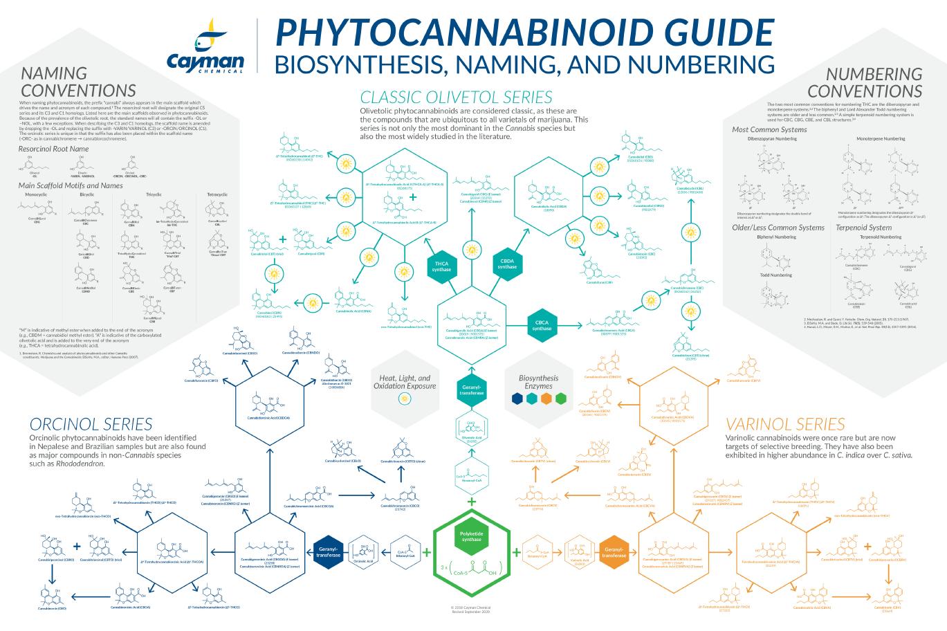 Phytocannabinoid Guide