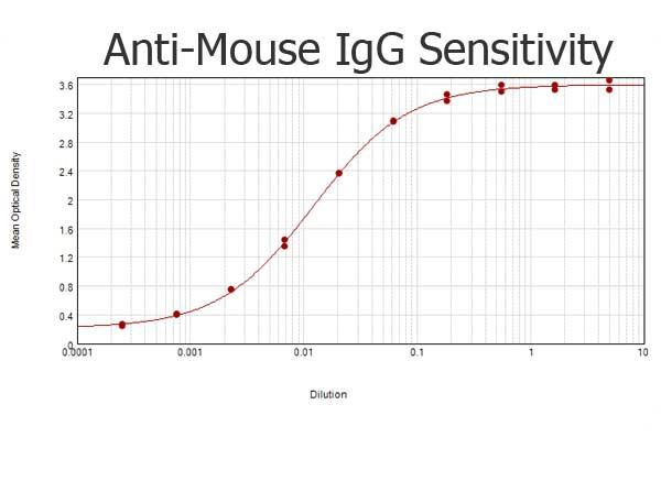 Anti-Mouse IgG (H&L) [Rabbit]