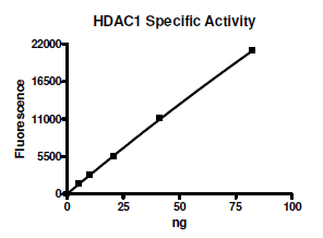 HDAC-1, active human recombinant protein