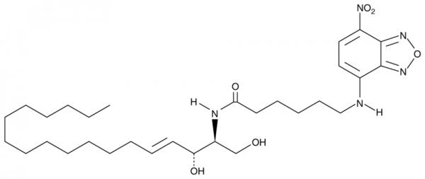 C-6 NBD Ceramide