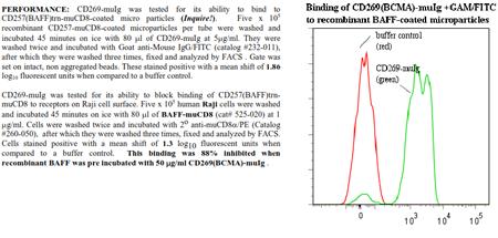 CD269 [BCMA] -muIg Fusion Protein, (human)