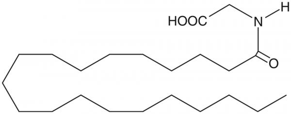 Arachidoyl glycine
