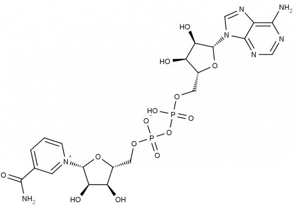 NAD+, free acid
