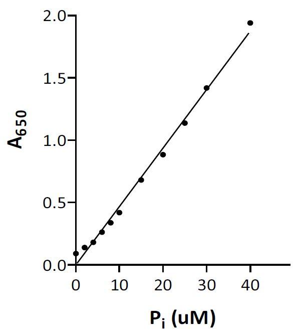 Standard-curve-for-Pi