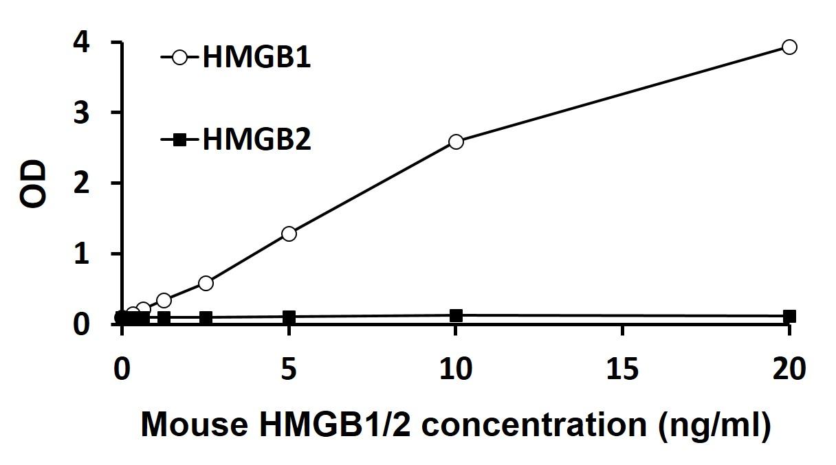 HMGB1 ELISA
