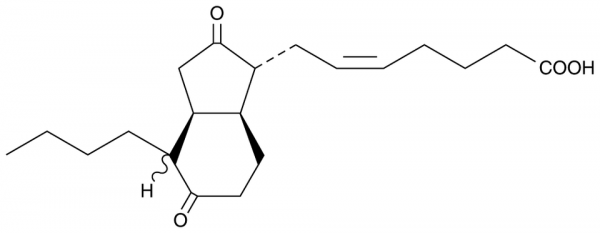 Bicyclo Prostaglandin E2