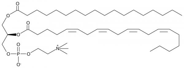 1-Stearoyl-2-Arachidonoyl PC