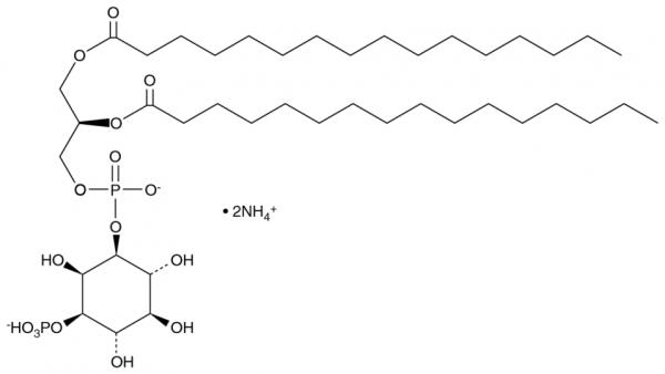 PtdIns-(3)-P1 (1,2-dipalmitoyl) (ammonium salt)