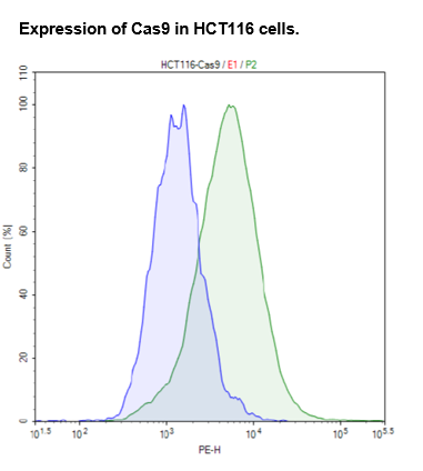 Cas9 Expressing HCT116 cell pool