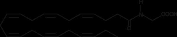 Docosahexaenoyl Glycine