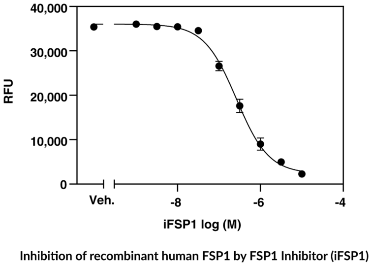 FSP1 Fluorescent Inhibitor Screening Assay Kit