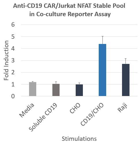 Anti-CD19 CAR Lentivirus (CD19 SCFV-CD28-4-1BB-CD3zeta)