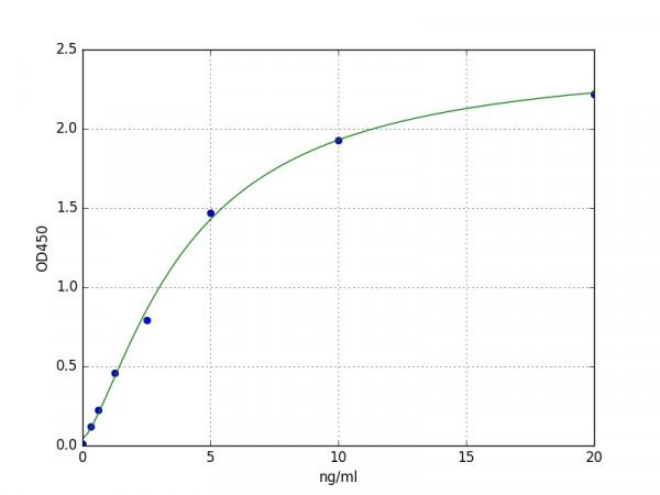 Porcine SLIT2 / Slit homolog 2 ELISA Kit