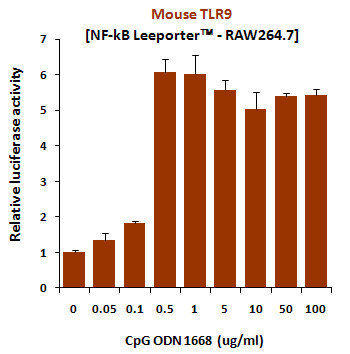 CpG ODN (1668), TLR9 ligand (Class B)