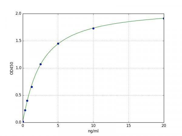 Mouse Tar DNA Binding Protein 43KDa / TDP43 ELISA Kit