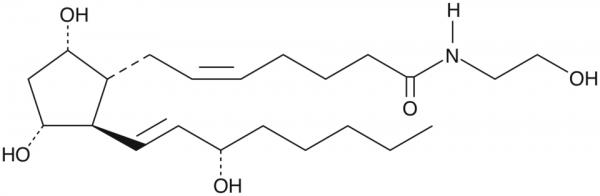 Prostaglandin F2alpha Ethanolamide