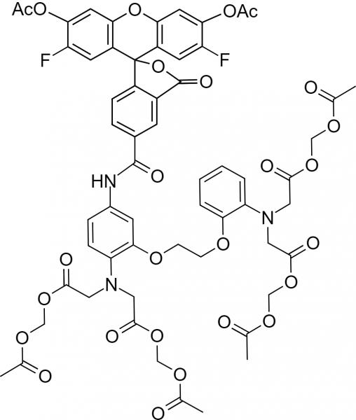__488 BAPTA-1, AM [similar to Oregon Green(R) 488 BAPTA-1, AM] *Cell permeant*