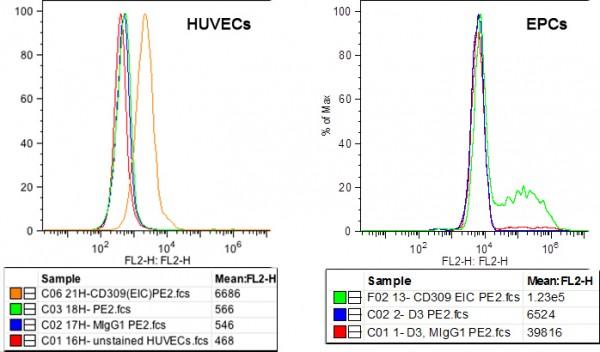 Anti-VEGFR-2/KDR (human), clone EIC