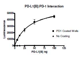 PD-1 (CD279), Fc fusion (Human)