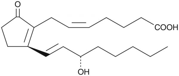 Prostaglandin B2