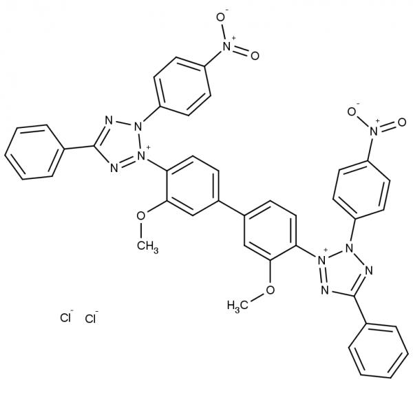 Nitroblue Tetrazolium Chloride (NBT)