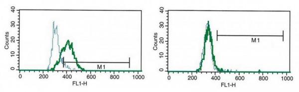Anti-IL-27 (human), Azide Free Clone B-G44 [Mouse]