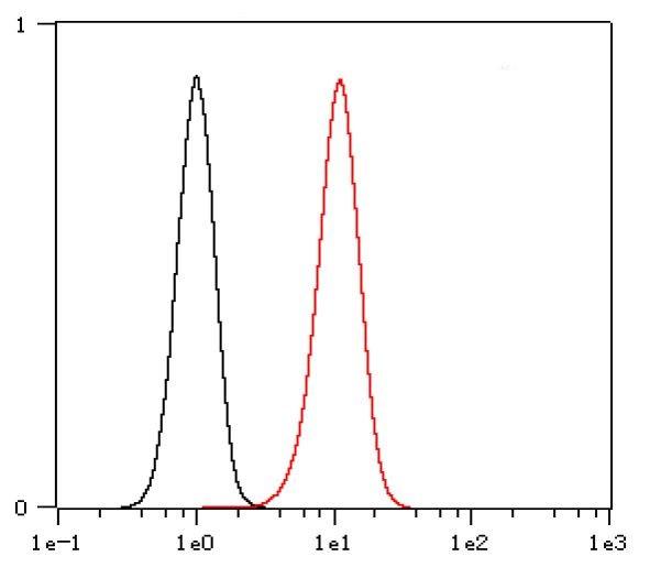 Anti-Type II Cytokeratins, clone SQab1885
