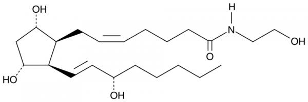 8-iso Prostaglandin F2alpha Ethanolamide