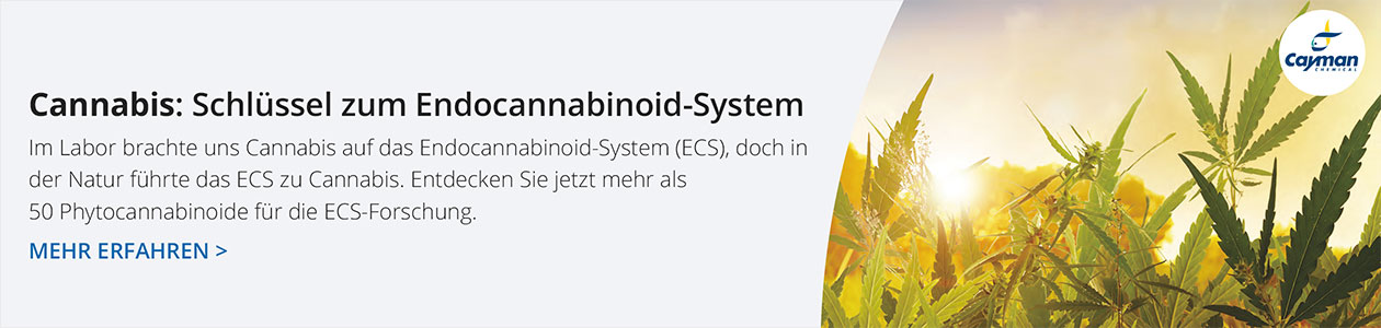 Phytocannabinoid Forschung