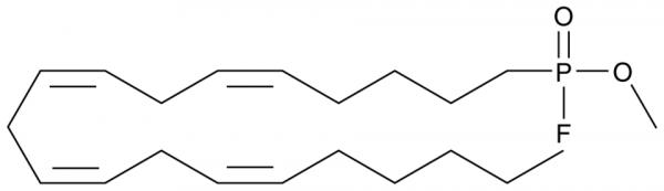 Methyl Arachidonyl Fluorophosphonate