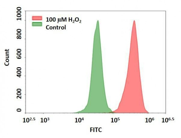Cell Meter(TM) Intracellular Fluorimetric Hydrogen Peroxide Assay Kit *Green Fluorescence Optimized