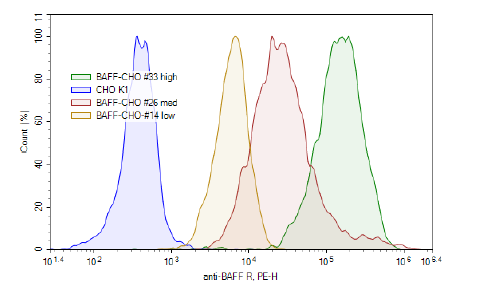 BAFF-R - CHO K1 Recombinant Cell Line (Low Expression)