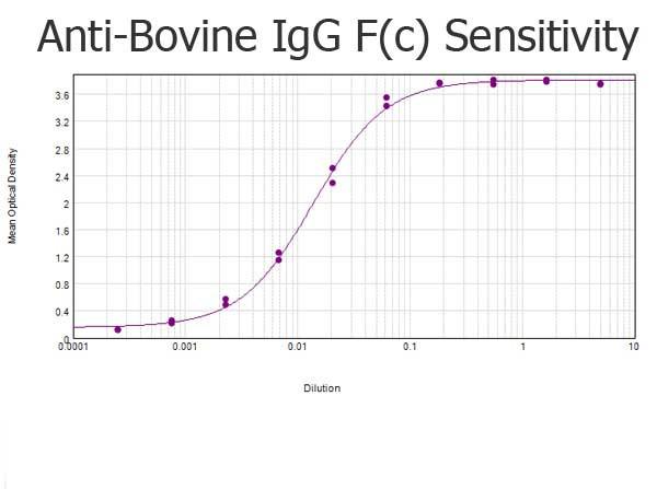 Anti-Bovine IgG F(c) [Rabbit]
