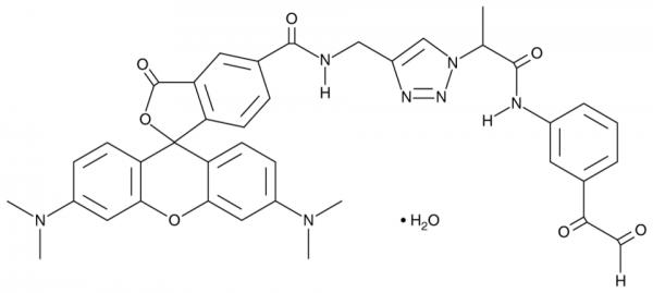 Citrulline-specific Probe