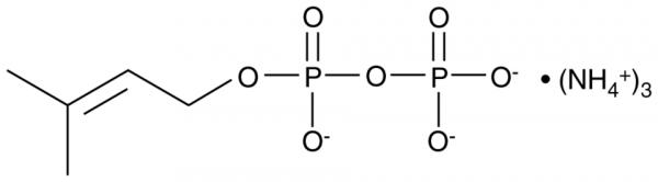 DMAPP (ammonium salt)