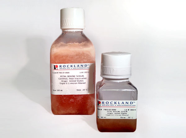 Fetal Bovine Serum, Certified, Heat Inactivated