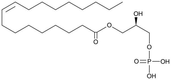 1-Oleoyl Lysophosphatidic Acid