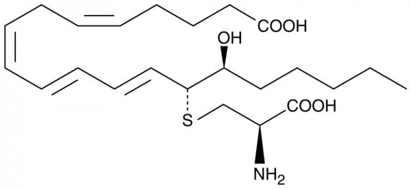 14,15-Leukotriene E4