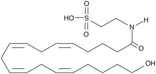 20-hydroxy N-Arachidonoyl Taurine