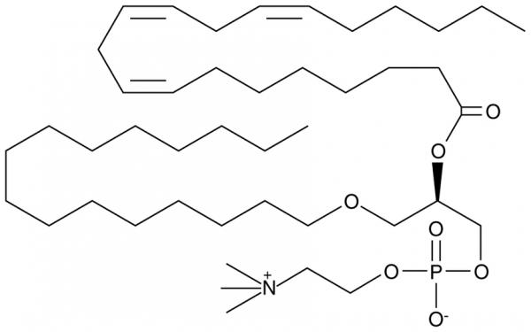 Dihomo-gamma-Linolenoyl PAF C-16