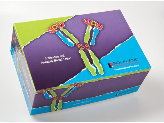 Antibody and Blocking Solution Starter Pack