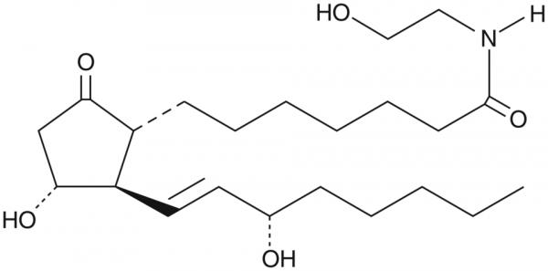 Prostaglandin E1 Ethanolamide
